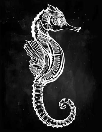beautifully: Hand drawn romantic Seahorse. Vector illustration isolated. Marine art for tattoo, coloring books. Beautifully detailed, ornate.