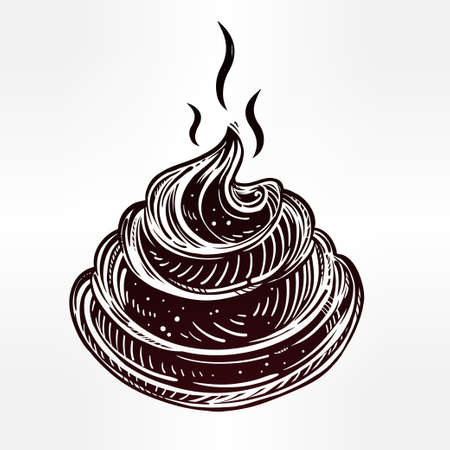 fecal: Poo icon in line art style. Isolated vector illustration. Aesthetically nice poop drawing. Illustration
