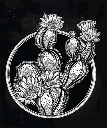 desert cactus: Drawing of with blooming cactus. Desert cacti art. Vector illustration isolated. Ethnic design, mystic tribal boho symbol. Blackwork tattoo flash, new school dotwork. Posters, t-shirts and textiles.