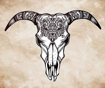 occult: Hand drawn romantic tattoo style ornate decorative demon like goat skull. Spiritual native indian navajo art. Vector illustration isolated. Ethnic design, mystic tribal boho symbol for your use. Illustration