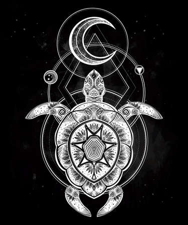 Ornate turtle in tattoo style with moon. Isolated vector illustration. Ideal for coloring page, shirt design effect,  tattoo and decoration.