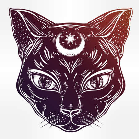 spirituality: Black cat head portrait with moon. Ideal Halloween background, tattoo art, Egyptian, spirituality, boho design. Perfect for print, posters, t-shirts and textiles. Vector illustration.