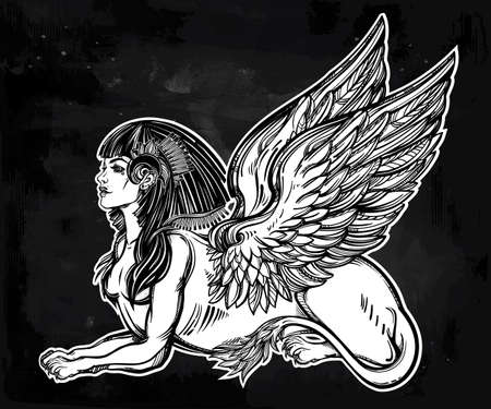 lion with wings: Sphinx, beautiful ancient beast. Mythical creature with head of human, body of lion and wings. Symbol of goddess of wisdom. Isolated vector illustration in line art style.
