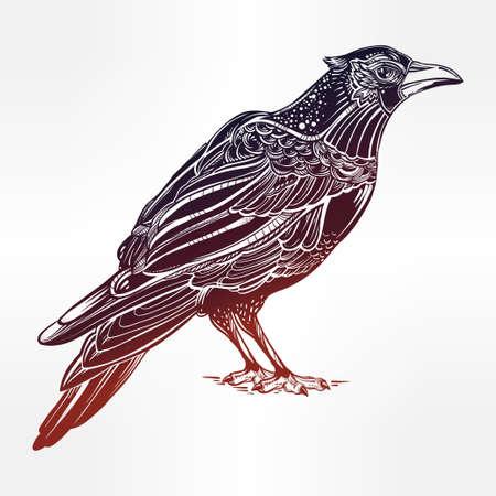 corvus: Detailed hand drawn raven bird. Isolated Vector illustration. Tattoo art, spirituality, boho, magic symbol. Witchcraft animal, mystic tribal element for your use.