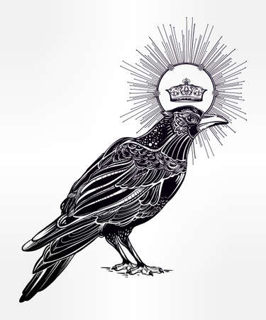 corvus: Detailed hand drawn raven bird with medieval crown decorated with rays. Isolated Vector illustration. Tattoo art, spirituality, magic symbol. Witchcraft animal, mystic element for your use.
