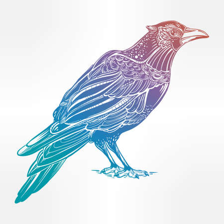 corvus: Detailed hand drawn raven bird. Isolated Vector illustration. Tattoo art, spirituality, boho, magic symbol. Witchcraft animal, mystic tribal element for your use.