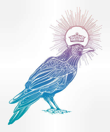 witchcraft: Detailed hand drawn raven bird with medieval crown decorated with rays. Isolated Vector illustration. Tattoo art, spirituality, magic symbol. Witchcraft animal, mystic element for your use.