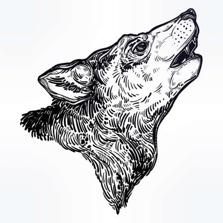 Decocrative hand drawn wolf howling at moon. Illustration