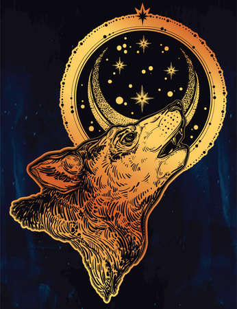 Wolf howling at moon, crescent in starry night sky Illustration