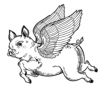Flying winged pig vector illustration.