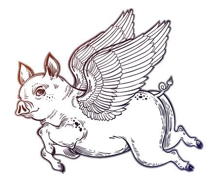 Flying winged pig illustration. Stock Photo