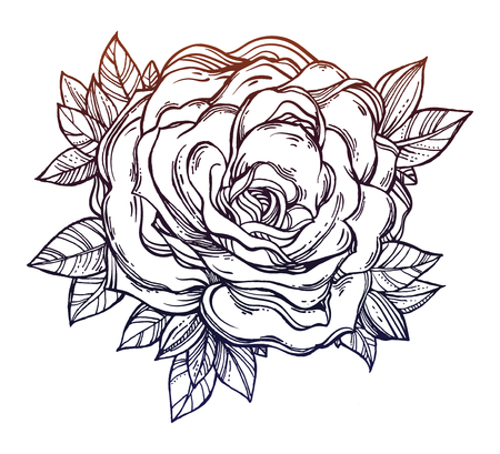 Vintage Detailed Hand Drawn Rose And Leaves Royalty Free Cliparts