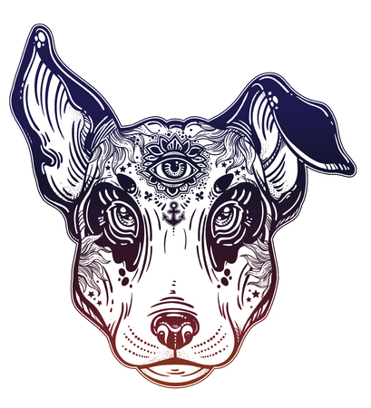 Vintage style beautiful gothic terrier portrait decorated in traditional flash art tattoos. Character tattoo design for dog pet lovers, artwork for print, textiles. Isolated vector illustration.