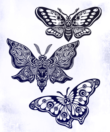 A collection of butterflies or moths. A set of fantasy style ornate insects Illustration