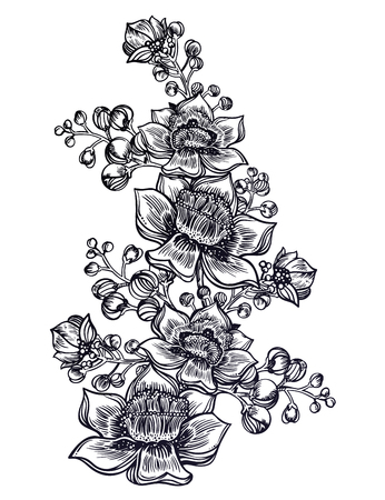 Exotic tropical flower and buds. Wild summer flowers, stem bouquet sketch in line art style. Elegant floral blossom, romantic tattoo decoration. Botanical vector isolated illustration.
