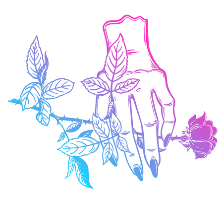 Linear art of a stylized female human hand holding a rose. 版權商用圖片