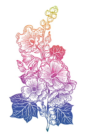 Decorative malva flowers on a stem. Hawaiian hibiscus flower or Mallow. Can be used for cards, invitations, tattoo, banners, posters, print design. Blossom and nature isolated vector illustration.