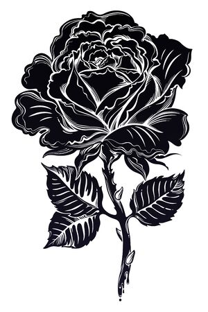 Dramatic floral hand drawn black rose blossom in full bloom in flash tattoo style. Romantic boho sadness motif, flower design element. Gothic concept art. Isolated vector illustration in line art.