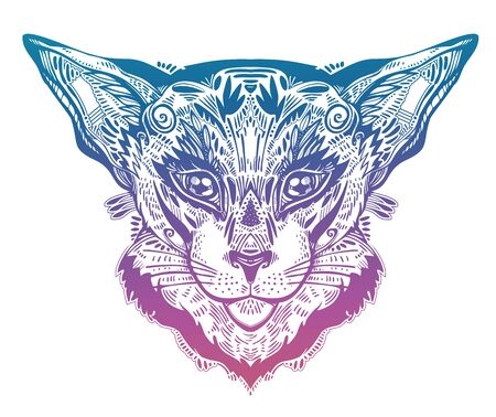 Vintage beautiful gothic cat or lynx portrait decorated in traditional flash art tattoo style.