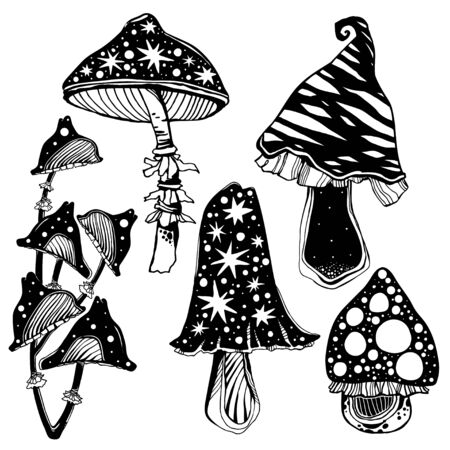 Magic psychedelic mushrooms set. Occult tripppy design, vintage gothic tattoo style. Nature and witchcraft art. Isolated vector illustration.