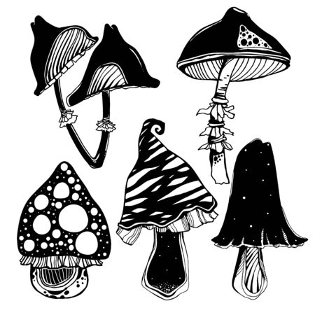 Fantasy psychedelic mushrooms set. Occult tripppy design, vintage gothic tattoo style. Nature and witchcraft art. Isolated vector illustration.  イラスト・ベクター素材