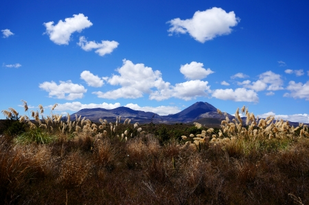trilogy: Three Mountain peaks Tongariro, Ruapehu and Ngauruhoe (also known as Mount Doom from famous movie trilogy Lord of the Rings) bathed in sun seen from a distance. Stock Photo