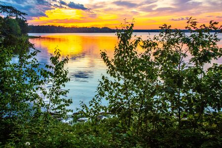Sunset over ocean inlet with vegetation in foreground on Mount Desert Island near Acadia National Park, Maine, USA