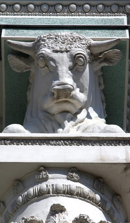 bull Stock Photo - 28824244