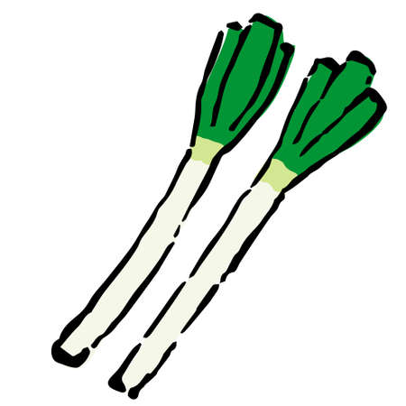 hand drawn illustration spring onion by ink and brush