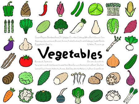 Vegetable Set: Hand drawn vector illustration like woodblock print 向量圖像