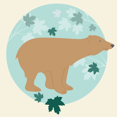 fur trees: Brown bear in maple forest.