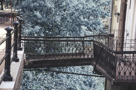 歩道と商業連立青い木を結ぶ金属橋