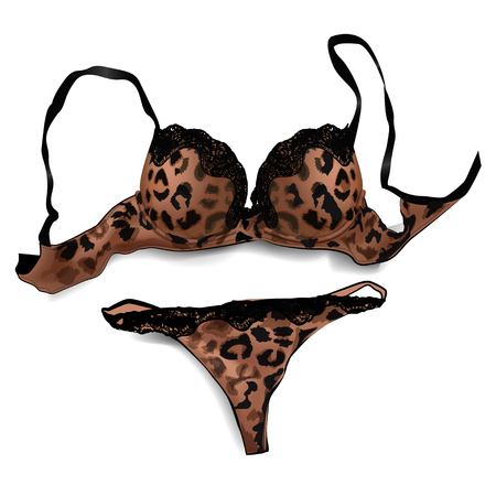 panties: Mujer sexy sujetador y las bragas de leopardo imprimen sobre fondo blanco.