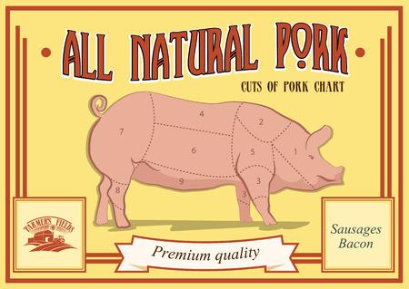 carver: Pork cuts diagram, vector illustration for your design Illustration