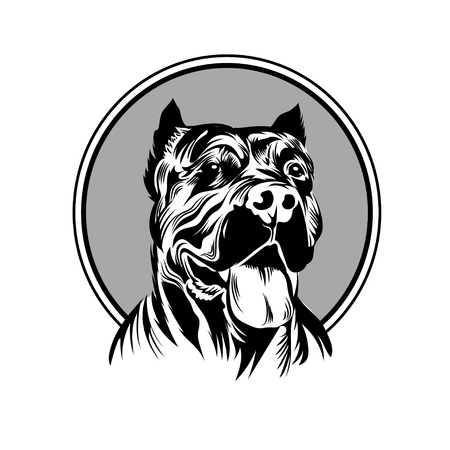 perro furioso: Ilustraci�n del vector de la mascota cabeza del pitbull Vectores