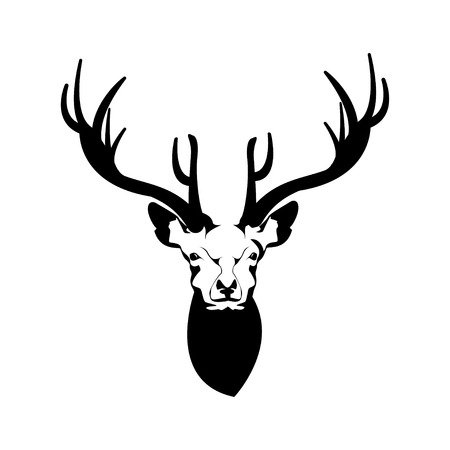whitetail deer: Deer Head. Vector Illustration of a Deer Head