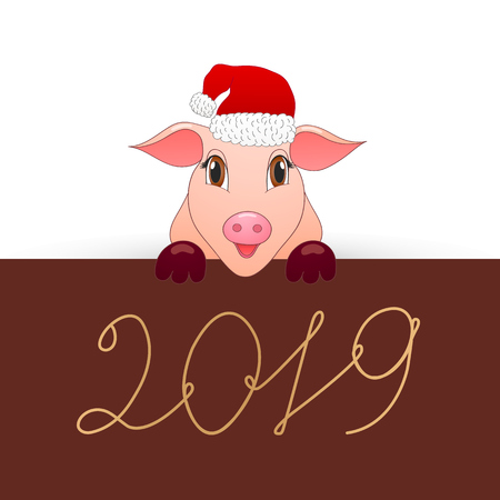 Pig is the symbol of the new 2019