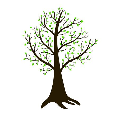On a lonely spring tree, sticky leaves grow. Isolated vector