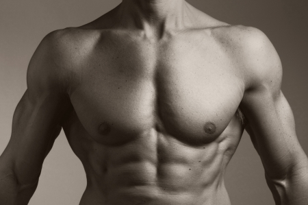 the torso of a muscular man   Stock Photo