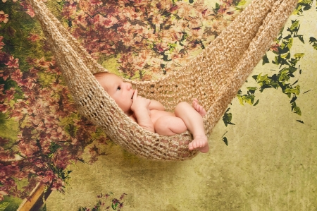 babies: A cute 7 day old newborn baby boy relaxes in a hammock  The studio set has a green backdrop with cherry blossoms   Stock Photo