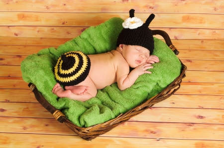 Three  3  week old newborn baby girl wearing a crocheted black and yellow bumblebee costume  The infant is sleeping on a green blanket inside of a basket