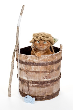 An Orange Tabby Cat Wearing a Crocheted Fisherman Hat and Sitting in an Old, Weathered Wooden Bucket with a Stick Fishing Pole and Crocheted Fish  Shot in the Studio on a White Background   photo