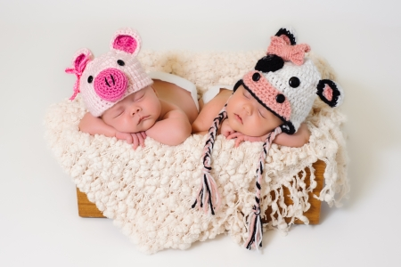 Sleeping fraternal twin newborn baby girls wearing crocheted pig and cow hats