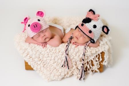 niñas gemelas: Dormir fraternales gemelas bebé recién nacido lleva ganchillo cerdo y vaca gorras