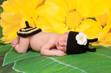 Newborn Baby Girl Wearing a Bumblebee Costume photo