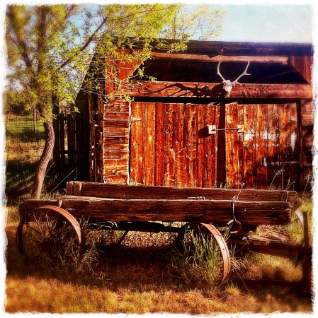 outbuilding: Antique horse-drawn wagon in front of an old wooden barn. Shot on a farm in Cedaredge Colorado. Stock Photo