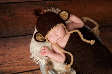 baby monkey: A newborn baby wearing a crocheted monkey hat and sleeping in a galvanized bucket  Shot in the studio with a rustic wood background