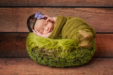 8 day old newborn baby girl sleeping in a green basket  She is swaddled in gauzy green material