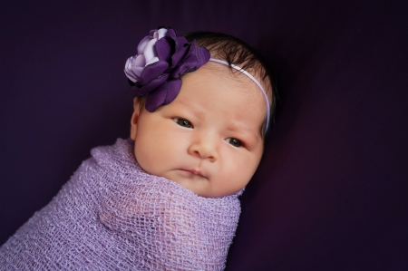 Headshot of an 8 day old newborn baby girl wearing a purple and lavender flower headband  She is wrapped in gauzy lavender fabric, lying on her back and looking off to the side  Shot on a dark purple background