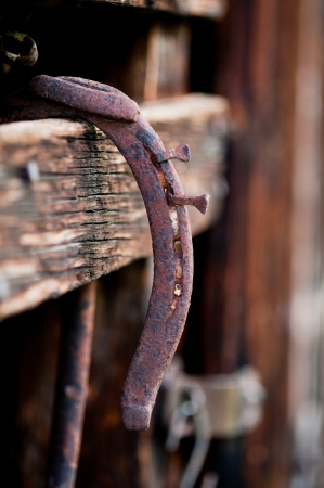 rusty nail: An old rusty horseshoe hanging on a wooden plank of a rustic Colorado barn  Stock Photo